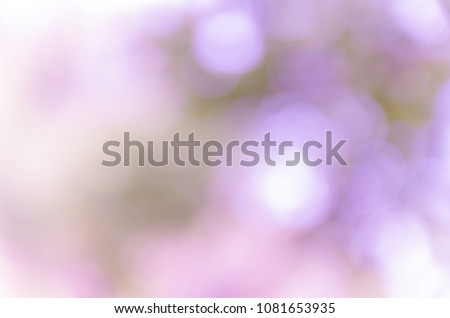 Violet abstract bokeh background from nature environment #1081653935