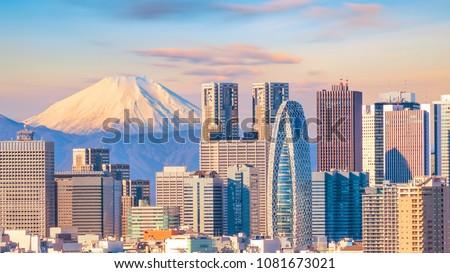 Panorama view of Tokyo skyline and Mountain fuji in Japan