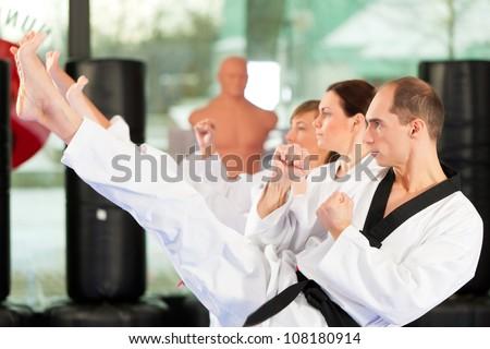 Leute im Fitnessstudio beim Training von Kampfsport, es geht um Taekwondo, der Trainer hat den schwarzen G�¼rtel #108180914