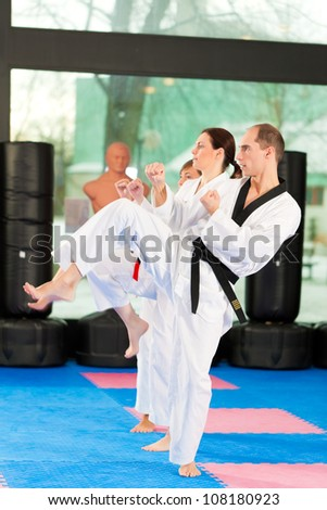 People in a gym in martial arts training exercising Taekwondo, the trainer has a black belt #108180923