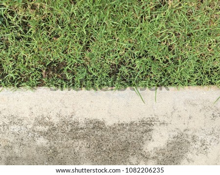 Cement with grass floor texture  #1082206235