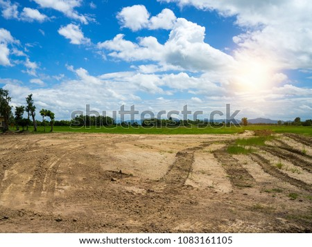 Empty dry cracked swamp reclamation soil, land plot for housing construction project with car tire print in rural area and beautiful blue sky with fresh air Land for sales landscape concept Royalty-Free Stock Photo #1083161105