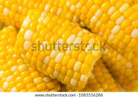 Raw Yellow Corn on the Cobb Ready to Eat #1083556286