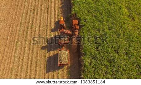 Sugar cane hasvest plantation aerial #1083651164