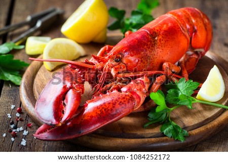 Steamed red lobster on a wooden cutting board with parsley and lemon #1084252172