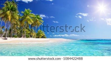 Palm Beach In Tropical Idyllic Paradise Island -  Caribbean - Guadalupe  Royalty-Free Stock Photo #1084422488