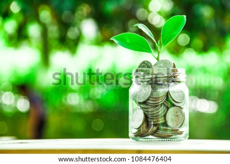 Close up to Deposit photo and Leaf moneys growing on green natural view. Bokeh blur background.