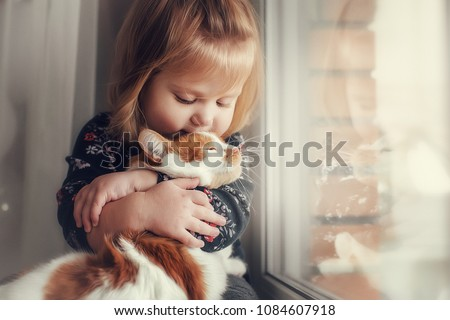 Portrait of a small cute child with a bald head that embraces with tenderness and love a red cat and smiles with happiness #1084607918