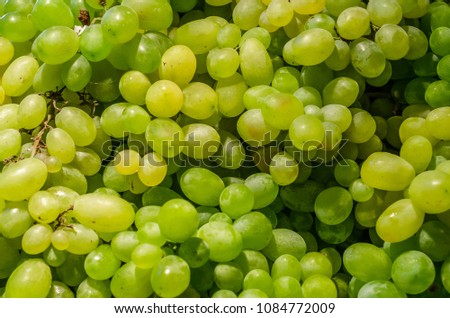 A bunch of fresh, ripe white grapes #1084772009