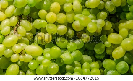A bunch of fresh, ripe white grapes #1084772015