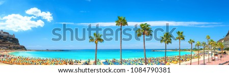 Panoramic view of famous Amadores beach and seafront with palm trees. Spanish resort. Gran Canaria, Canary islands, Spain Royalty-Free Stock Photo #1084790381