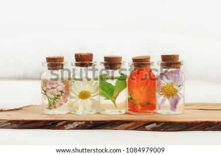 Different holistic herbs in oil bottles in a row on a wooden plank, light background. Chamomile, calendula, basil herbal aroma therapy.  Royalty-Free Stock Photo #1084979009