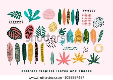 Set of abstract tropical leaves. Vector design elements. Royalty-Free Stock Photo #1085859659