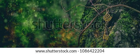 vintage golden key in forest. magical beautiful key, concept secret garden. mystery nature background. banner. copy space Royalty-Free Stock Photo #1086422204