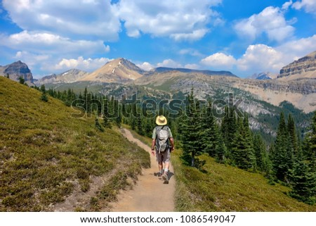 Man hiking in Canadian Rockies in Banff National Park. Man walking on trail to Dolomite Mountain on a summer day. Alberta. Canada. #1086549047