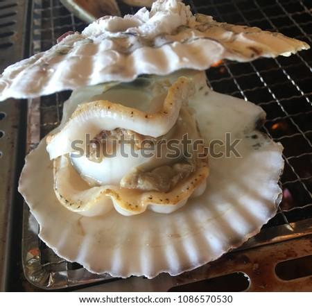 Wellcome to seafood word #1086570530