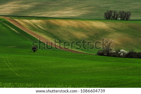 Spring in Moravia #1086604739