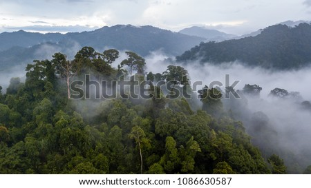 Aerial view of mist, cloud and fog hanging over a lush tropical rainforest after a storm Royalty-Free Stock Photo #1086630587