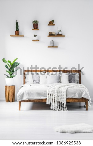 Plant on wooden stool next to bed in simple white bedroom interior with shelves #1086925538