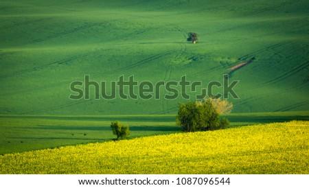 Moravian fields at spring near Kyjov village, Czech Republic #1087096544