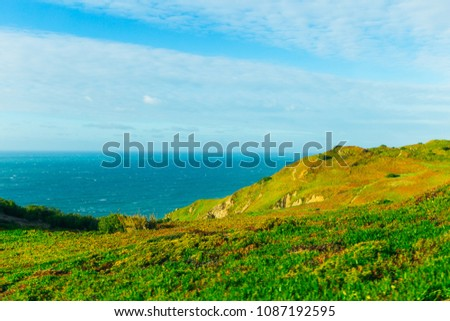 beautiful hills are covered with green grass and calm ocean #1087192595