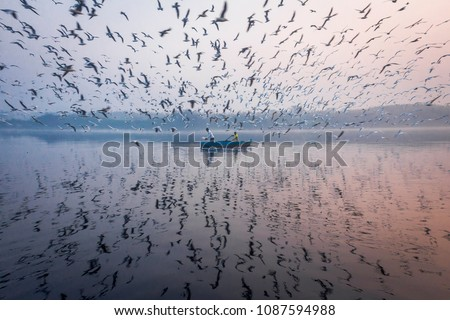 A must visit in Delhi, India is Yamuna Ghat. You'll be amazed by the number of birds comes here every winter. Perfect for photography.