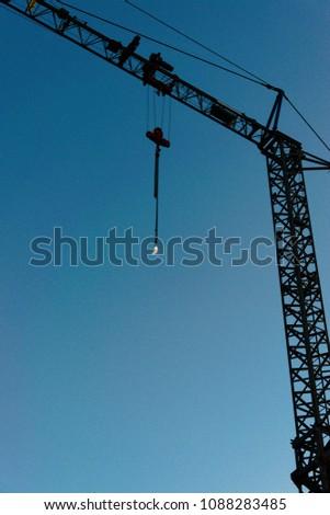 Crane and moon #1088283485
