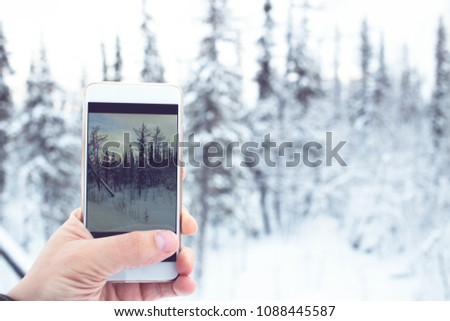 Traveler makes pictures winter forest with smartphone