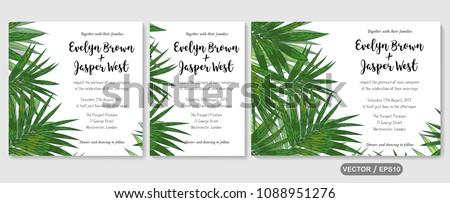 Wedding invite, invitation rsvp thank you card vector floral greenery design: Forest tropical palm leaf howea (kentia) branch green, foliage herbs elegant frame border. Watercolor cute set #1088951276