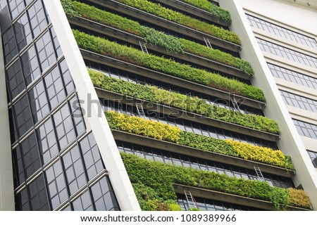 vertical garden a concept of sustainable building, eco building landscape climbing plants Royalty-Free Stock Photo #1089389966