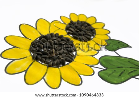 Hand-made picture of lovely sunflower. Painted with yellow and green gouache and glued black seeds. Art on the white background