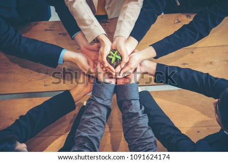 Sustaining green business company trust ecology partners. Plantation teams holding hands green plant together. Hands stacked partners joint teamwork trusted green sustainable develop business concept #1091624174