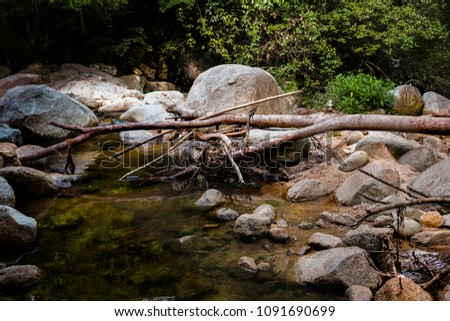 Rock and tree branches at waterfall #1091690699
