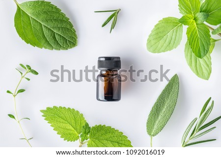 Bottle of essential oil with fresh herbal sage, rosemary, thyme, lemon balm spearmint and peppermint setup with flat lay on white background #1092016019
