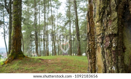 Close up of a pine tree trunk in a forest with heart symbol blurred background #1092183656