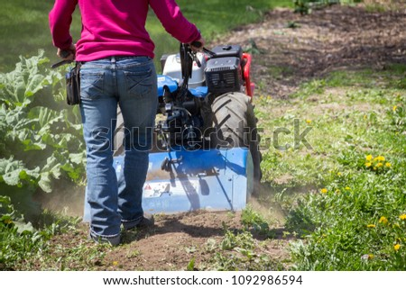 Woman worker driving BCS 853 13 HP rototiller is a popular tractor unit preparing soil on outdoor garden #1092986594