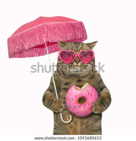 The cat in sunglasses holds a pink parasol and a bitten donut. White background.