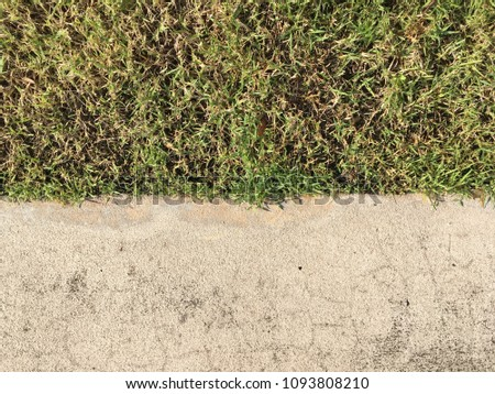 Cement and grass floor texture for background #1093808210