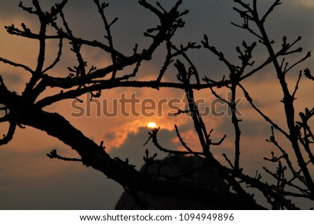 Silhouette Sunrise, Huangshan mountains (Anhui, China),China,picture for wallpaper,business,background #1094949896