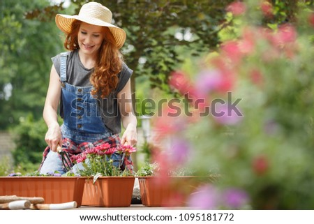 A ginger, smiling woman wearing a hat and dungarees planting pink flowers in pots using gardening tools #1095181772