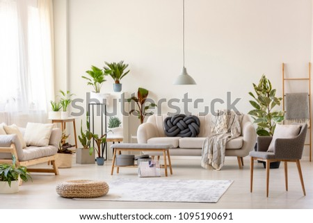 Pouf on rug and plants in spacious living room interior with grey chair near beige couch. Real photo #1095190691