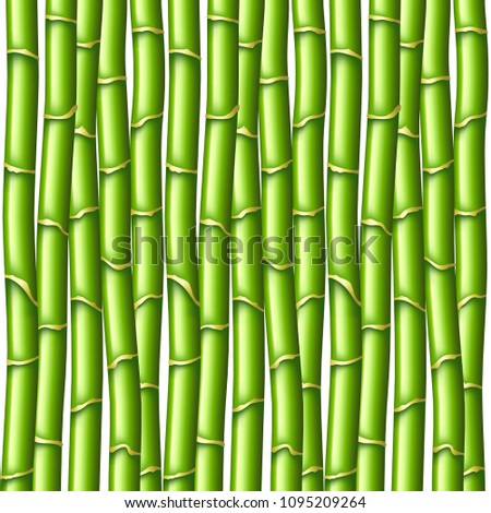 Green bamboo texture photo realistic vector background