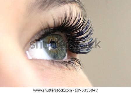 Eyelash Extension Procedure. Woman Eye with Long false Eyelashes. Close up macro shot of fashion eyes visagein in beauty salon. #1095335849