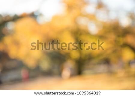 Abstract blur city park autumn season bokeh background #1095364019