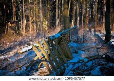 Old fence, Nörten-Hardenberg, Germany #1095457577