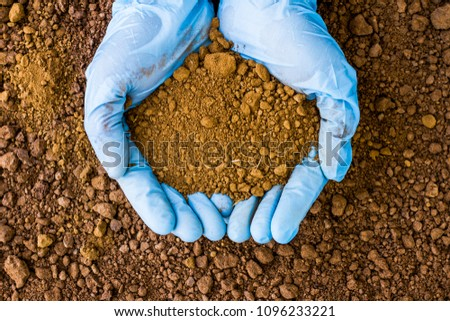 Testing the Soil sample on hand which wears a blue rubber medical glove with soil ground background.  The concept of soil quality and farming #1096233221