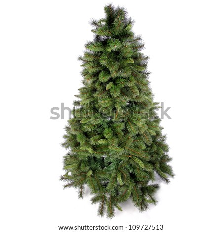 Fir tree for Christmas on white background #109727513