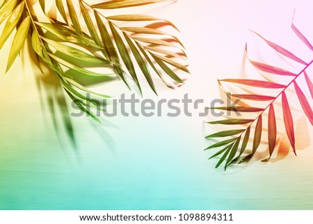 Summer tropical palm leaves flat lay background with a blank space, stylized image #1098894311