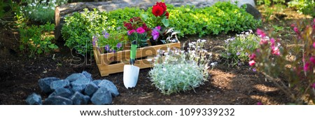 Gardening. Crate Full of Gorgeous Plants and Garden Tools Ready for Planting In Sunny Garden. Spring Garden Works Concept. Garden Landscaping small business start up. Web banner. #1099339232
