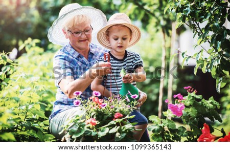Gardening with kids. Grandmother and her grandchild enjoying in the garden with flowers. Hobbies and leisure, lifestyle, family life  #1099365143
